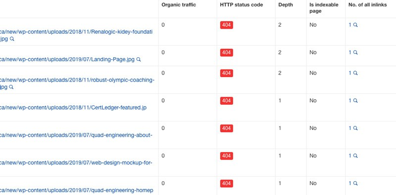 seo audit broken links
